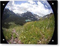 Montana Rolling Wildflowers Acrylic Print