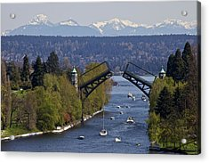 Montlake Bridge And Cascade Mountains Acrylic Print by C. Chase Taylor