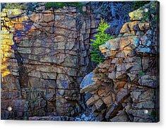 Monument Cove I Acrylic Print by Rick Berk