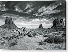 Acrylic Print featuring the photograph Monument Valley by Lou Novick