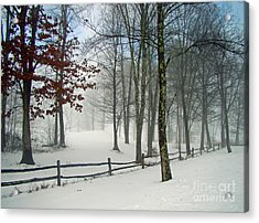 Acrylic Print featuring the photograph Mood Lifting by Betsy Zimmerli