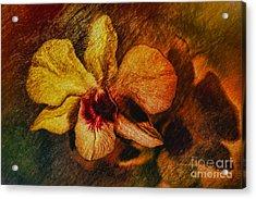 Mood Of The Orchid Acrylic Print by Deborah Benoit