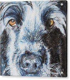 Moody Blue Acrylic Print