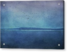 Moody  Blues - A Landscape Acrylic Print