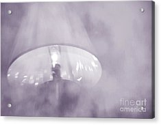 Moody Light- Lavender  Acrylic Print by Darla Wood