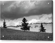 Moody Meadow, Tsenkher, 2016 Acrylic Print