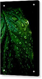 Moody Raindrops Acrylic Print by Parker Cunningham