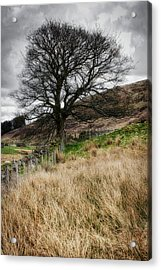 Acrylic Print featuring the photograph Moody Scenery In Central Scotland by Jeremy Lavender Photography