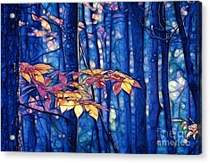 Acrylic Print featuring the photograph Moody Woods by Aimelle