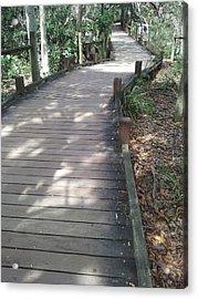 Mooloolaba Path Acrylic Print