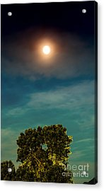Moon And Tree Acrylic Print by Dennis Wagner