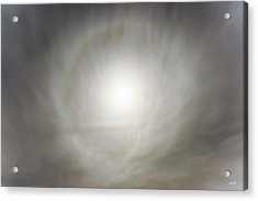 Acrylic Print featuring the photograph Moon Dog by Leland D Howard