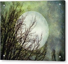 Moon Dream Acrylic Print