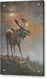 Moon Dusted Moose Acrylic Print