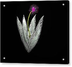 Moon Flower Acrylic Print by John Mueller