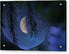 Moon In A Web Acrylic Print by Molly Dean