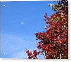 Moon In Blue Sky With Red Leaves Acrylic Print by Becky Erickson