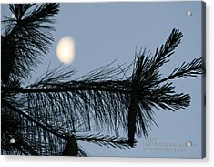 Acrylic Print featuring the photograph Moon In The Sky 1 by Paul SEQUENCE Ferguson             sequence dot net
