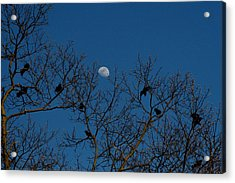 Acrylic Print featuring the photograph Moon In The Sky 3 by Paul SEQUENCE Ferguson             sequence dot net