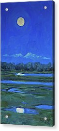 Acrylic Print featuring the painting Moon Light And Mud Puddles by Billie Colson