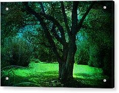 Moon Lit Acrylic Print
