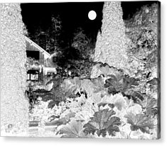 Moon Over Stanley Park Acrylic Print by Will Borden