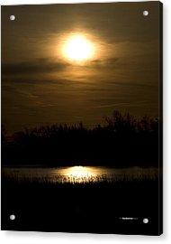 Moon Over The Pond Acrylic Print by Tom Buchanan