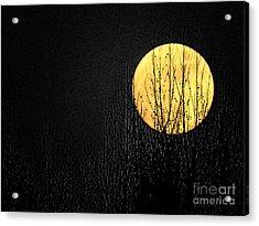 Moon Over The Trees Acrylic Print