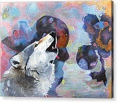 Moon Song Acrylic Print by David Raderstorf