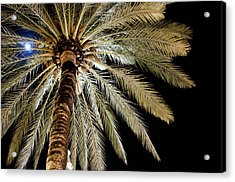 Moon Through Palm Tree Acrylic Print by Photo by Stuart Gleave