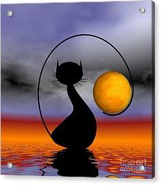 Mooncat's Waiting  Acrylic Print