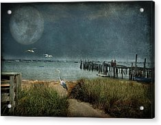 Moondance Acrylic Print by Marie  Gale