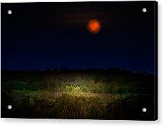Moonglow II Acrylic Print by Mark Andrew Thomas