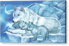 Moonlight And Frost II Acrylic Print
