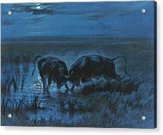 Moonlight Battle Acrylic Print