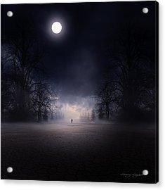Moonlight Journey Acrylic Print