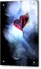 Moonlight Love Acrylic Print