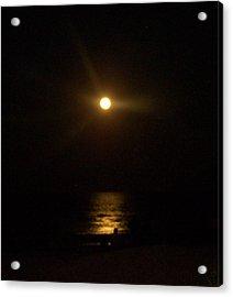 Moonlight Magic Acrylic Print by Patricia Taylor