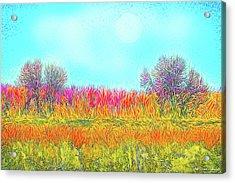Acrylic Print featuring the digital art Moonlight On Golden Fields - Boulder County Colorado by Joel Bruce Wallach
