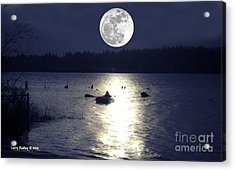 Moonlight Row Acrylic Print by Larry Keahey