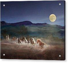 Moonlight Run Acrylic Print
