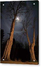 Moonlight Sentinels Acrylic Print by Jerry LoFaro