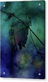 Moonlight Serenade Acrylic Print by Bonnie Bruno