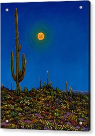 Moonlight Serenade Acrylic Print by Johnathan Harris