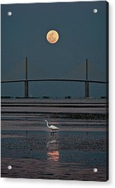Moonlight Stroll Acrylic Print by Steven Sparks