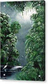 Moonlight  Swamp Acrylic Print by Darlene Green