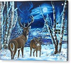 Moonlight Walk Acrylic Print by Darlene Green