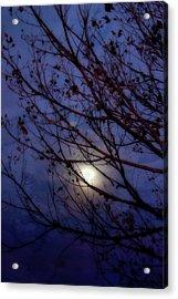 Acrylic Print featuring the photograph Moonrise by Ellen Heaverlo