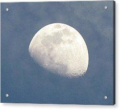Moonrise Acrylic Print by Helaine Cummins