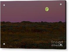 Moonrise In Bodega Bay Acrylic Print by Diane Diederich